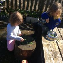cooking with herbs in the mud kitchen