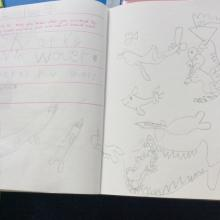 writing facts about sea creatures