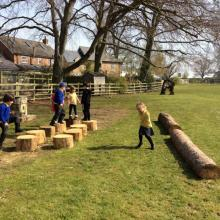New tree trunks donated by Newby hall